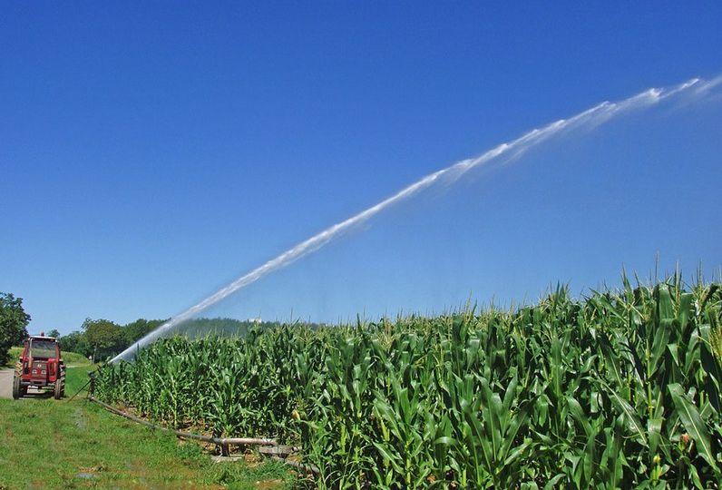 irrigazionenews